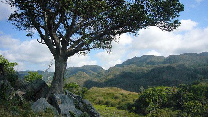 парк Сьерра-Маэстра Куба