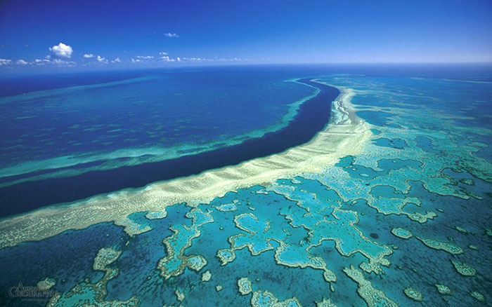 Австралия Большой Барьерный Риф